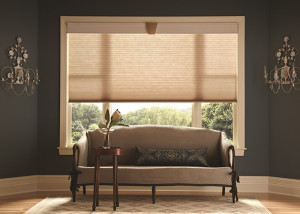 Cellular Shades Pompano Beach
