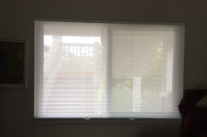 palm beach blinds